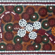 Animals - 1 - Bindi Lee Australian Indigenous Artist