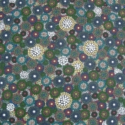 Southern Cross 4 - Bindi Lee Australian Indigenous Artist